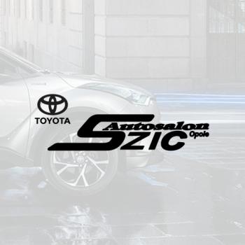 Toyota SZIC