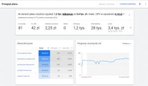 ile kosztuje reklama w Google - wykresy